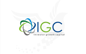 Inverstor Group Capital