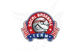 Social Baseball Team